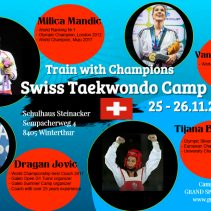 Swiss Taekwondo Camp